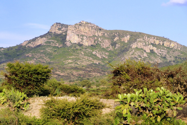 Efectúa SMAE Acciones de Conservación de Suelos en el Cerro del Muerto