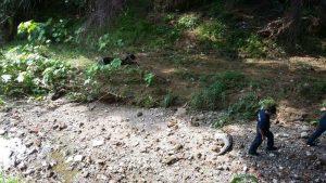 Localizan Cadáver en Estado de Putrefacción en Arroyo Seco