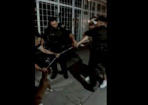 No Hubo Abuso de Autoridad en el Aseguramiento del Perro ni en la Detención del Propietario del can: SSPMA